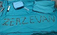 Böbreğinden çıkan taşlarla 'Zerzevan' yazıldı